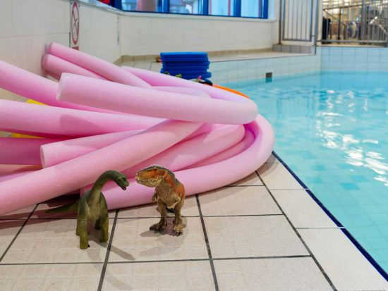 pink pool noodles with two plastic dinosaurs at the side of the small swimming pool